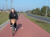 Dutch-style cycleway - general image
